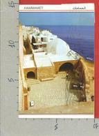 CARTOLINA VG TUNISIA - HAMMAMET - Cafè Sidi Bou Habib - 10 X 15 - ANN. 1990 - Tunisia