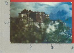 CARTOLINA VG TIBET - LHASA - The Potala Palce - 10 X 15 - ANN. 1994 - Tibet