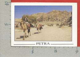 CARTOLINA VG GIORDANIA - PETRA - Scorcio Panoramico - 10 X 15 - ANN. 2008 ISRAELE - Giordania