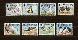 Jersey 1998 Yvertn° 806-813  (°) Used Cote 14,00  Euro Faune Oiseaux Vogels Birds - Jersey