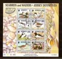 Jersey 1997 Bloc  18 (°) Used Cote 18 Euro  Faune Oiseaux Vogels Birds - Jersey