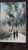 CPA JAPON GROUPE D ENFANTS JAPONAIS JAPONAISES  EN COSTUME TRADITIONNEL PROMENADE PARC - Japan