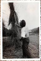 Photo Originale Portrait De Paysan Brassant Les Foins Vers 1939 - Fourche Et Moissons - Métiers