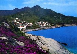 Chiessi - Panorama In Primavera - Isola D'elba - Formato Grande Viaggiata – E 10 - Livorno