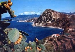 Golfo Seccione E Montebello - Isola D'elba - Formato Grande Viaggiata – E 10 - Livorno