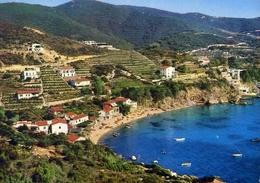 Isola D'elba - Lo Scaglieri - 43385 - Formato Grande Viaggiata – E 10 - Livorno