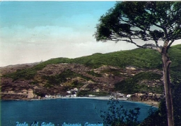 Isola Del Giglio - Spiaggia Campese - Formato Grande Viaggiata – E 10 - Grosseto