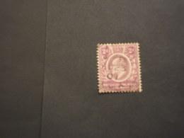 AFRICA CENTRALE - 1903/4 RE 2 P. - TIMBRATO/USED - Kenya, Uganda & Tanganyika