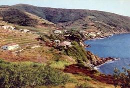 Portoferraio - Il Viticcio - Isola D'elba - 291 - Formato Grande Non Viaggiata – E 10 - Livorno