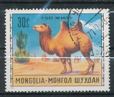 N° Yv 590 - Chevaux , Chameau - Mongolie