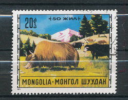 N° Mi 589 - Yack - Mongolie