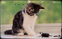 Telefonkarte Japan - Katze , Cat -  111-066 - Japan