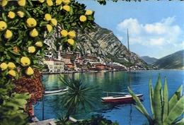 Limone - Lago Di Garda - 150 - Formato Grande Viaggiata Mancante Di Affrancatura – E 10 - Brescia