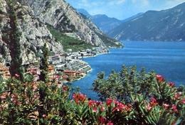 Limone - Panorama - Lago Di Garda - 192 - Formato Grande Non Viaggiata – E 10 - Brescia
