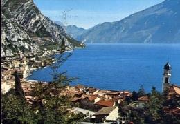 Limone - Panorama - Lago Di Garda - 308-097 - Formato Grande Viaggiata – E 10 - Brescia
