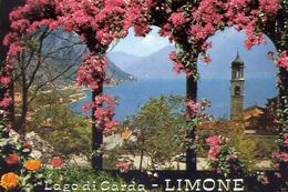 Limone - Particolare - Lago Di Garda - 2102 - Formato  Grande Non Viaggiata  – E 10 - Brescia