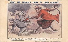 "Very Rare Edwardian (Vintage) British Political Postcard ""What The Radicals..."" Lloyd George Conservative Party - Satira"