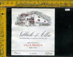 Etichetta Vino Liquore Nebbiolo D'Alba Villa Bianca-Alba CN - Etichette