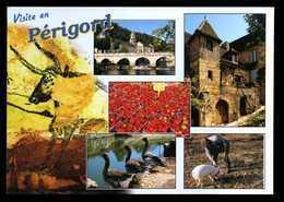 24 Visite En Perigord  ( Champignons, Funghi, Cochon Qui Cherche La Truffes, Oies, Fraises, Brantome) - Sarlat La Caneda