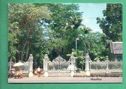 Afrique Ile Maurice Mauricius Botanic Garden Of Pamplemousses - Maurice
