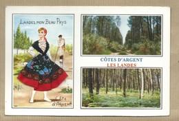 Carte Brodée Landes Mon Beau Pays - Multivues Côte D' Argent Landais Echasses - Ed Vacances Ecrite - Brodées