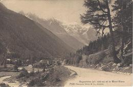 74 ARGENTIERE ROUTE DU COL DES MONTETS LONGE L' ARVES VALLEE DE CHAMONIX MONT BLANC Editeur: CHARNAUX  FRERES No  7120 - Chamonix-Mont-Blanc