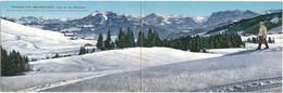 XA.519.bis  Panorama Vom Alpenhotel-Bödele Bei Dornbirn - Double Postcarddouble - Dornbirn