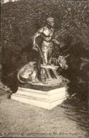 BRUXELLES :   Jardin Botanique  : La Paix - Forêts, Parcs, Jardins