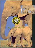 New Zealand - 1996 Endangered Species - $50 Elephants - NZ-D-59 - Mint In Pacific Coin Folder - Neuseeland