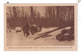 Missions Esquimaude Nord Canadien Freres Bucherons Arbres Coupes Attelage Boeuf  Missionnaires Oblats Canada - Yukon
