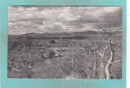 Old Small Post Card Of Birchenough Bridge, Manicaland, (Southern Rhodesia) Zimbabwe,Q59. - Zimbabwe