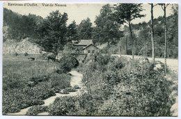 CPA - Carte Postale - Belgique - Environ D'Ouffet - Vue De Nesson - 1912 (M7431) - Ouffet