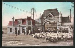 AK Chicago, IL, Union Stock Yards, Swift & Company, Entrance Gate - Chicago