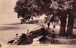 FOURAS -17- LA PLAGE NORD ET LES CHALETS DU BOULEVARD DE L'OCEAN - Fouras-les-Bains