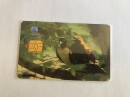 Indonesia - Chip Card - Birds - Mint In Blister - 35000 Ex - Indonesia