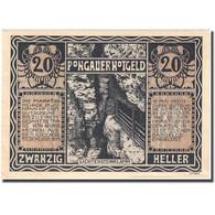 Billet, Autriche, St Johann, 20 Heller, Chasseur 1920-12-31, SPL, Mehl:FS 895a - Oesterreich