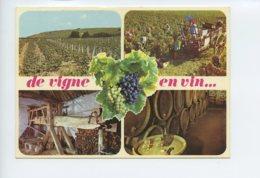 Piece Sur Le Theme De Multivues - De Vigne En Vin - Voyagee - France