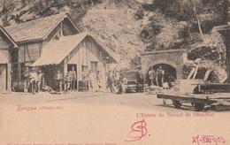 Cartolina Viaggiata - Sent - Svizzera, Brigue , L'Entrèe  Du Tunnel - Svizzera