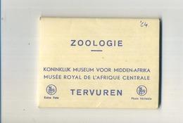 TERVUREN :  ZOOLOGIE : Carnet Met 10 Foto's9.5 X 7.5 Cm  (  Zie Scans ) - Tervuren