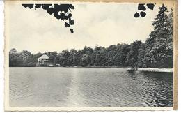 Seloignes.-L'étang De La Fourchinée - Momignies