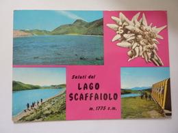 """Cartolina """"Saluti Dal LAGO SCAFFAIOLO"""" - Non Classificati"""