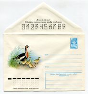 COVER USSR 1978 RED-BREASTED GOOSE FAUNA BIRDS #78-235 - 1970-79