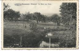 Macquenoise. La Mare Aux Chats - Momignies
