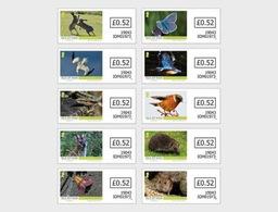 Man / Isle Of Man - Postfris / MNH - Complete Set Wildlife 2019 - Man (Eiland)