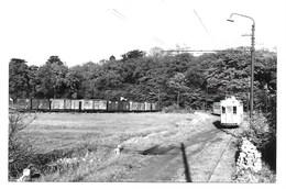 Oostmalle - Tram. - Photos