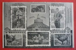 AUSTRIA - WIEN , INTERNATIONELE JAGD - AUSSTELLUNG 1910 - Vienna
