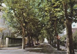 LUCCA - Lido Di Camaiore  - Viale Del Secco - Pensione Villa Gigliola - 1985 - Lucca