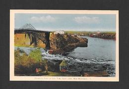 ST JOHN - NEW BRUNSWICK - REVERSING FALLS AT LOW TIDE - PAR PECO - St. John