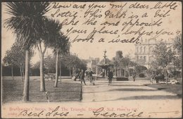 The Triangle, Dunedin, 1908 - Braithwaite's Series Postcard - Nouvelle-Zélande