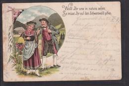 B32 /   Trachten Litho Schwarzwald / Bad Herrenalb 1897 - Trachten